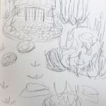Garden First Sketch
